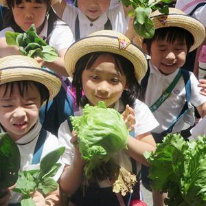 中野マリア幼稚園の給食